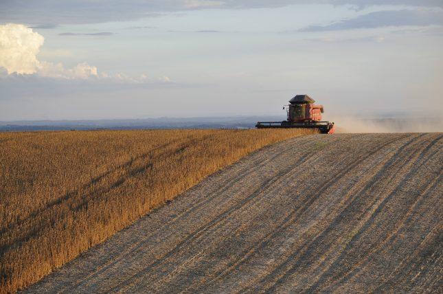 Soy Harvesting